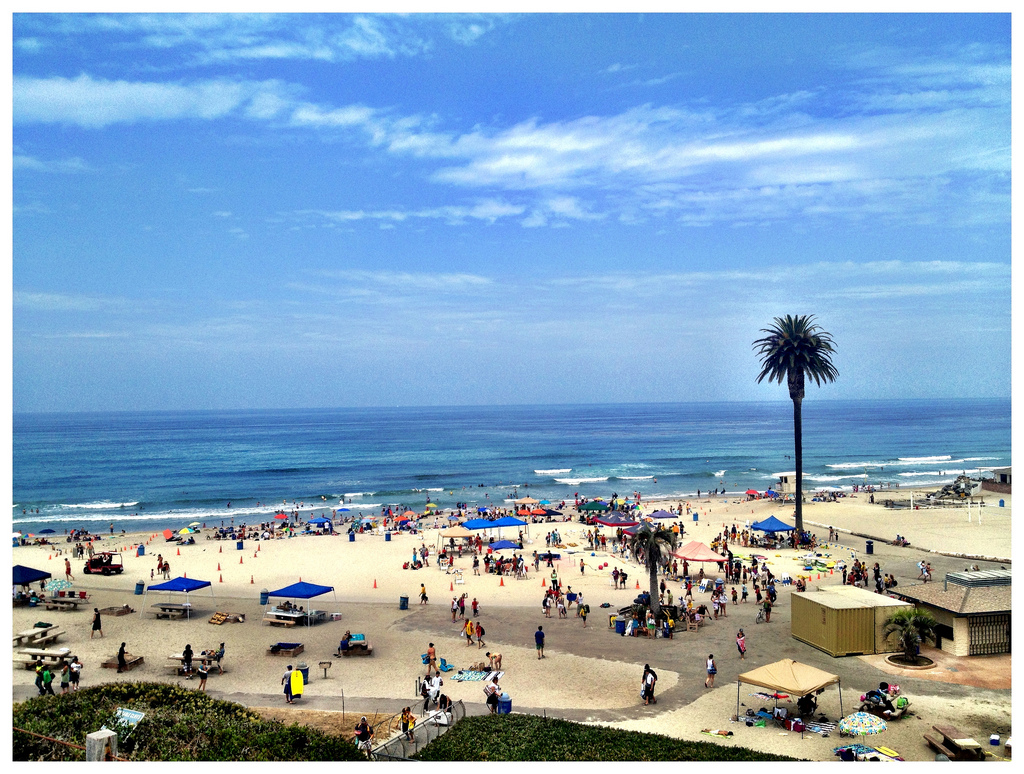 This Could Be Almost Any Southern California Beach But The Solitary Palm Tree Is Signature Of Moonlight What Should Name